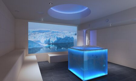 Icelounge | © Freedimensions.at